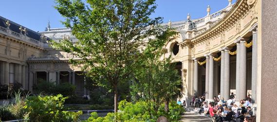 Les meilleurs bars en terrasse paris for Cafe le jardin du petit palais