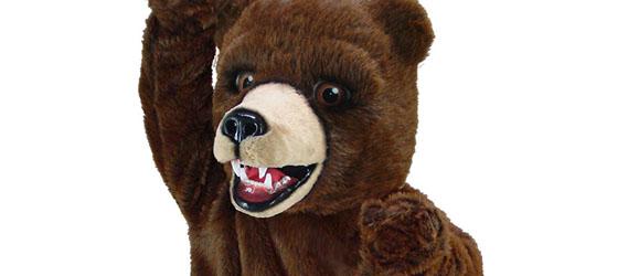 intripid les visiteurs ours