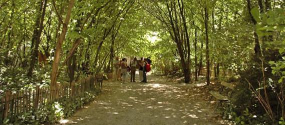 jardin-insolite-paris-naturel