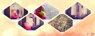 Contactez Le pigeon sur son , ou sur sa page
