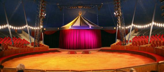 cirque mariage insolite paris intripid evg evjf