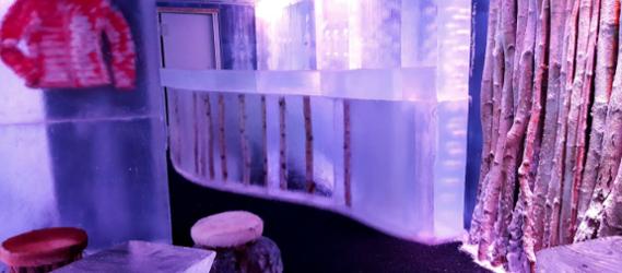 ice-kube-mariage-insolite-paris-intripid-evg-evjf