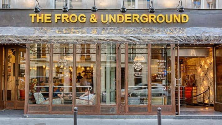 The frog underground