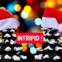 Idées cadeaux de Noël !